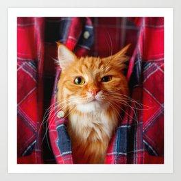 Cute and brash ginger cat in tartan shirt Art Print
