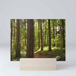 Rising Sun in the Forest Mini Art Print