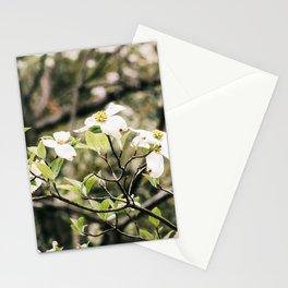 Dogwood 6 Stationery Cards