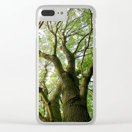 Leaves Reaching To Heaven Clear iPhone Case