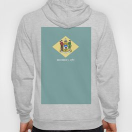 flag delaware,america,usa,Blue Hen,mid-altlantic, Delawarean,Small Wonder,Wilmington,Dover,Newak Hoody