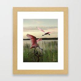 The Spoonbills of Lake Saint George Framed Art Print