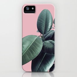 Ficus Elastica #14 #CoralBlush #decor #art #society6 iPhone Case