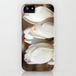 Crocus iPhone Case