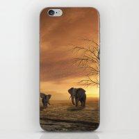 elephants iPhone & iPod Skins featuring Elephants by Susann Mielke