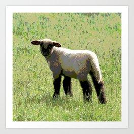 Cute lamb Art Print