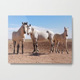 Navajo Horses Metal Print