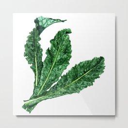 Lacinato Kale Metal Print