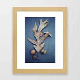 Acorn Framed Art Print
