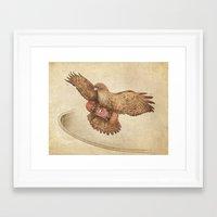 hawk Framed Art Prints featuring Hawk by Terry Fan