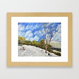 Kosciuszko National Park, Australia Framed Art Print