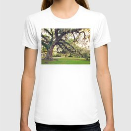 Live Oak Tree with Spanish Moss T-shirt