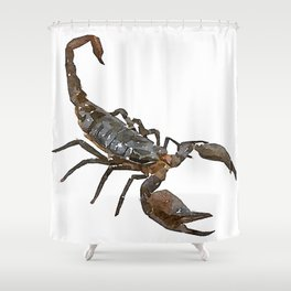 """Friendly Scorpion"" Watercolor Painting Shower Curtain"