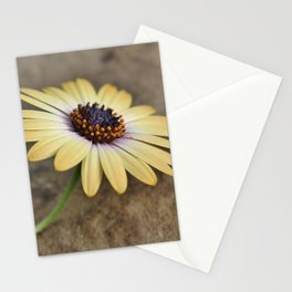 Resting... Stationery Cards