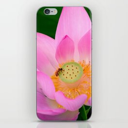 lotus flower iPhone Skin
