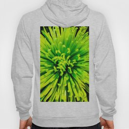 Lime Spider Hoody
