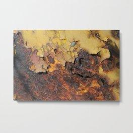 A Rusty Affair 2 Metal Print