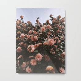 Blooming fields Botanical Flower Photography Metal Print