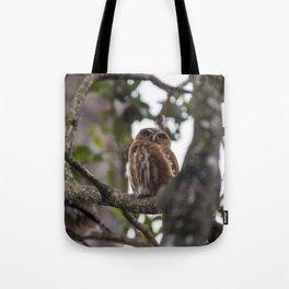 Birds from Pantanal Caburé Tote Bag
