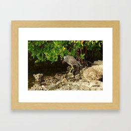 Love Crabs For Lunch Framed Art Print