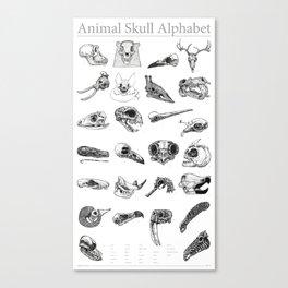 Animal Skull Alphabet Canvas Print