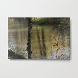 Tree Reflection Willamette Metal Print
