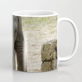 Elephant_20171101_by_JAMFoto Coffee Mug