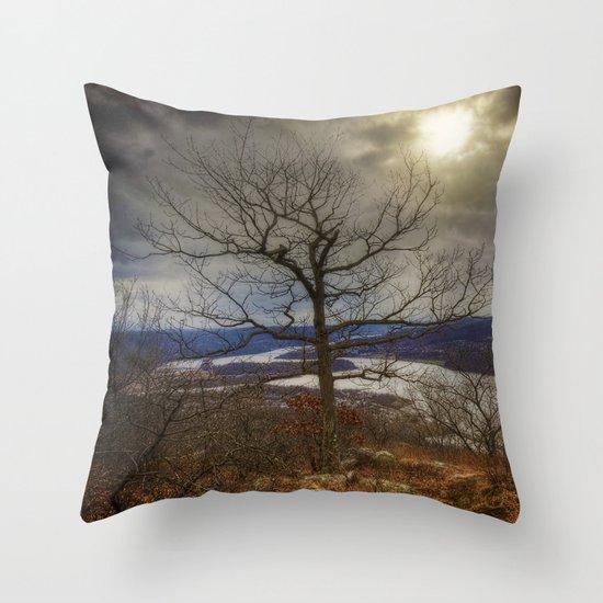 Hudson Highlands Throw Pillow