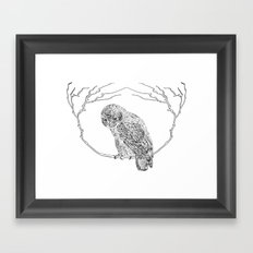 Owl In Tree (Print) Framed Art Print