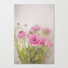 . Spring Indoors . Canvas Print