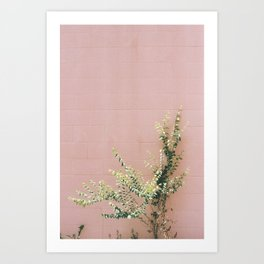 Pink / Green Art Print