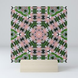 KALEIDOSCOPE LILY ELODIE SINGLE FLOWER PINK/WHITE 3 Mini Art Print