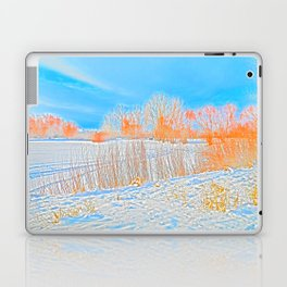 After the storm Laptop & iPad Skin