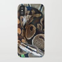 monty python iPhone & iPod Cases featuring Python by GardenGnomePhotography