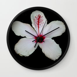 White Hibiscus Isolated on Black Background Wall Clock