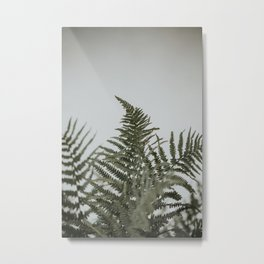 Minimalistic fern leaves | Colourful Travel Photography | Amsterdam, Holland (The Netherlands) Metal Print