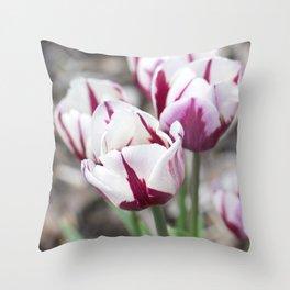 Port wine dip-dye tulips Throw Pillow