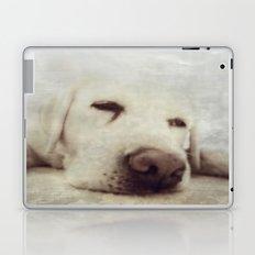 Pooch Laptop & iPad Skin