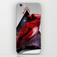 cardinal iPhone & iPod Skins featuring Cardinal by MyArti