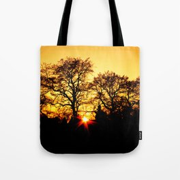 Tree with Sunset Tote Bag