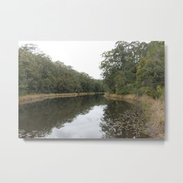 lilies on the pond Metal Print