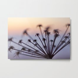 Hazy flower Metal Print
