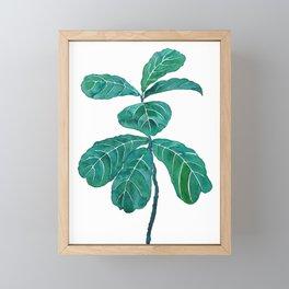 fiddle leaf fig watercolor Framed Mini Art Print