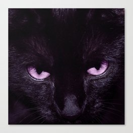 Black Cat in Amethyst - My Familiar Canvas Print