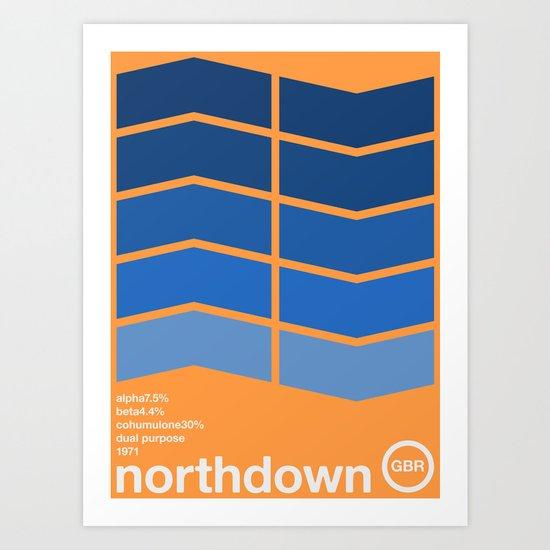 northdown single hop Art Print