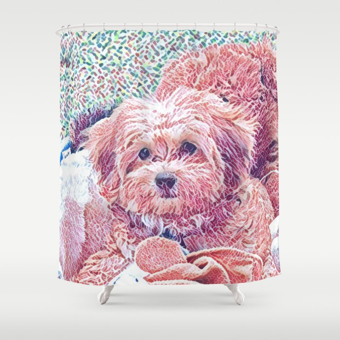 Copper The Havapookie As A Puppy Shower Curtain