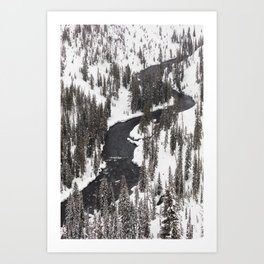 Yellowstone National Park - Lewis River Art Print