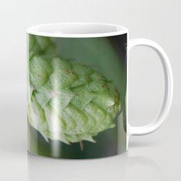 Humulus lupulus, the Common Hop Coffee Mug
