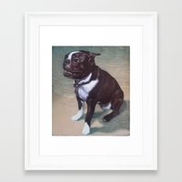 boston terrier Framed Art Prints featuring Boston Terrier by RSassi