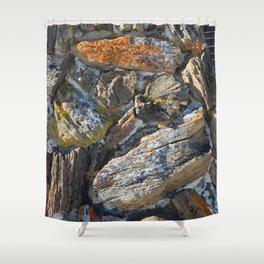 Petrified Shower Curtain
